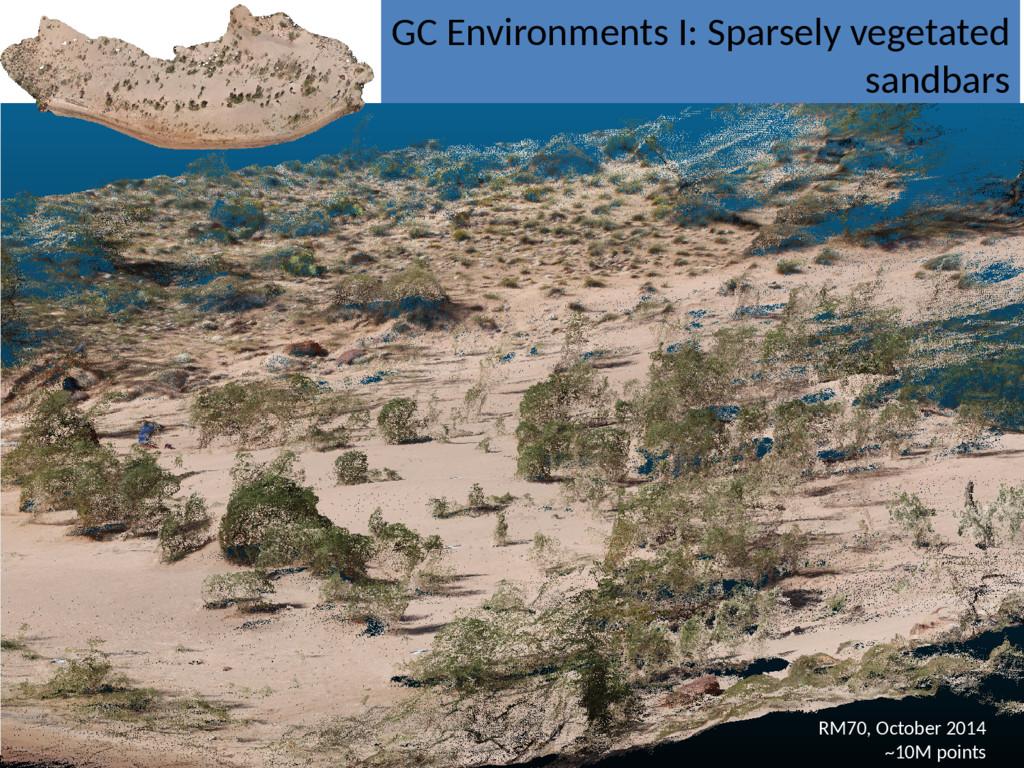 GC Environments I: Sparsely vegetated sandbars ...