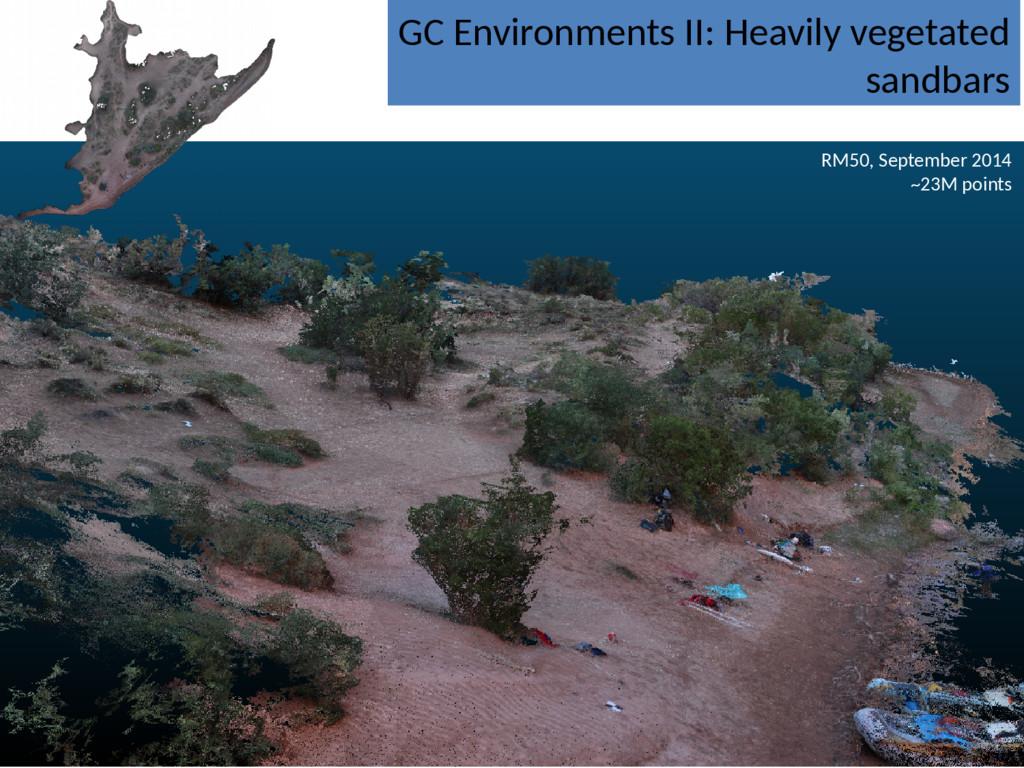 GC Environments II: Heavily vegetated sandbars ...