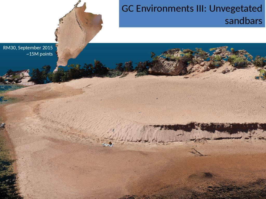 GC Environments III: Unvegetated sandbars RM30,...