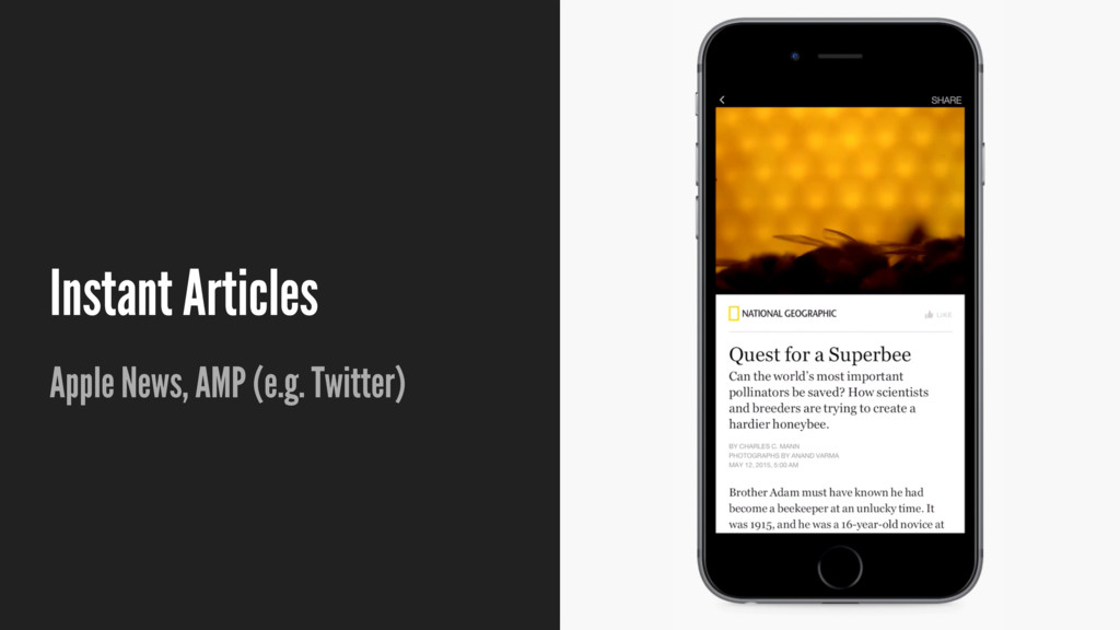 Instant Articles Apple News, AMP (e.g. Twitter)