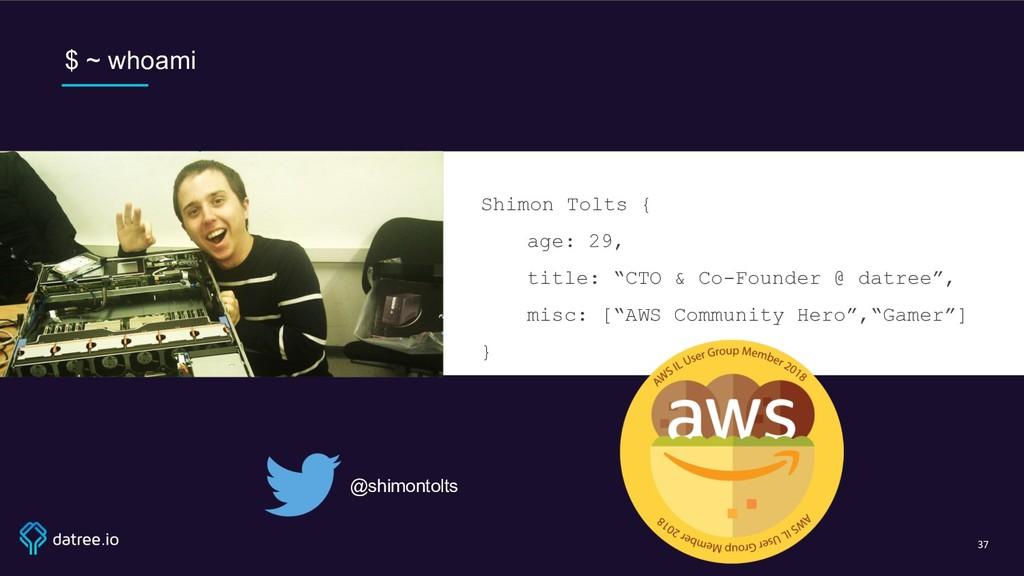 "$ ~ whoami Shimon Tolts { age: 29, title: ""CTO ..."