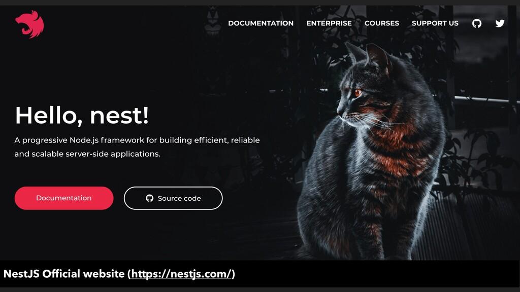 NestJS Official website (https://nestjs.com/)