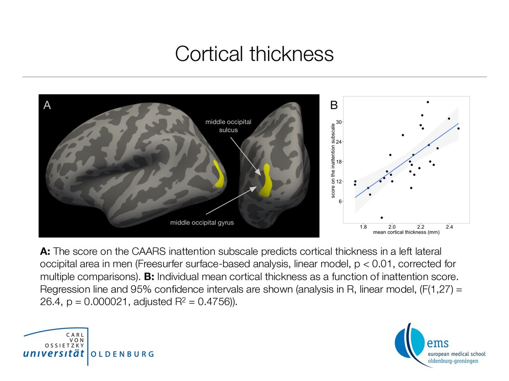 Cortical thickness A: The score on the CAARS in...