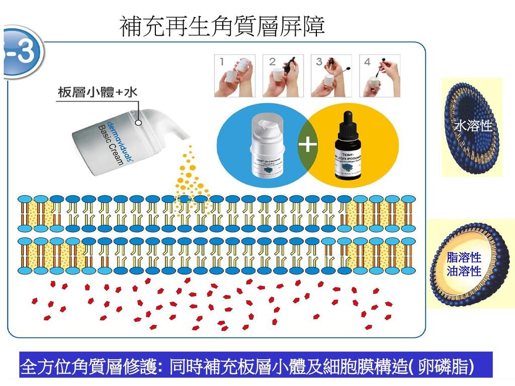 全方位角質層修護: 同時補充板層小體及細胞膜構造(卵磷脂) 脂溶性 油溶性 水溶性 補充再生角...