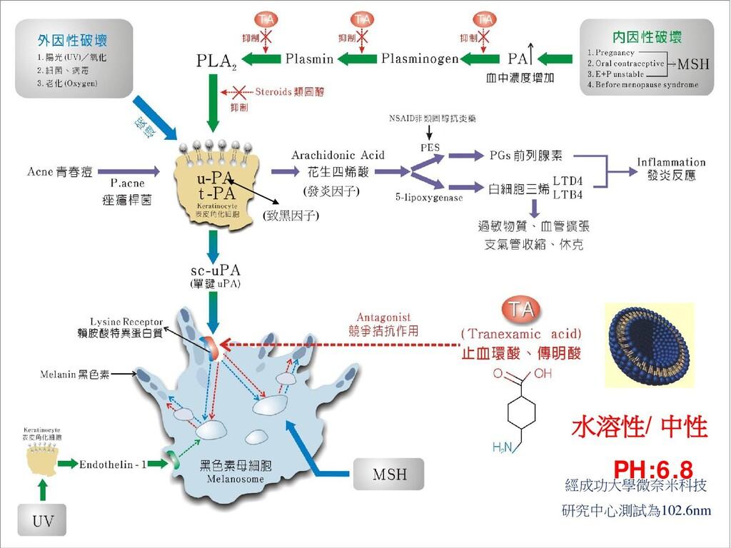 水溶性/中性 PH:6.8 經成功大學微奈米科技 研究中心測試為102.6nm (發炎因子) ...