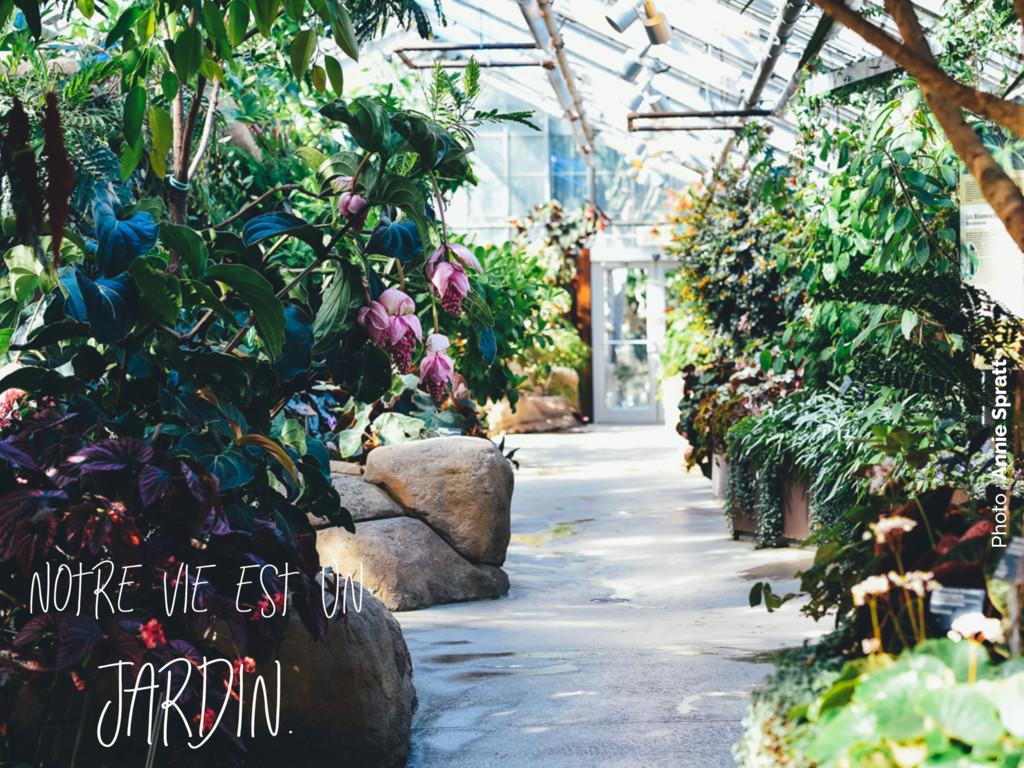 Photo : Annie Spratt Notre vie est un jardin.