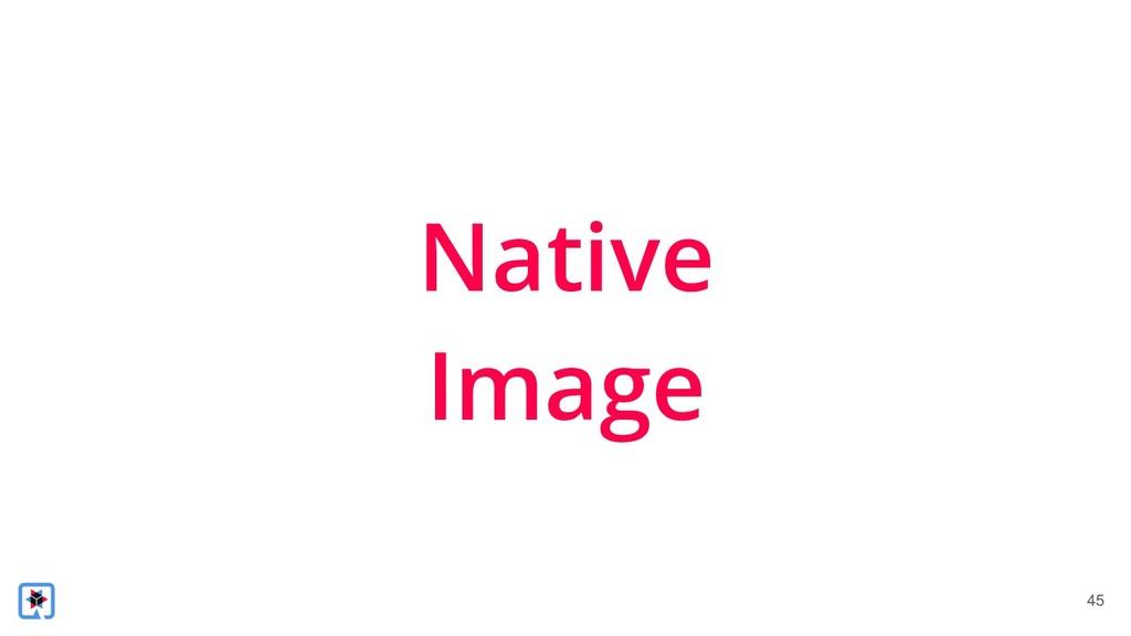 !45 Native Image