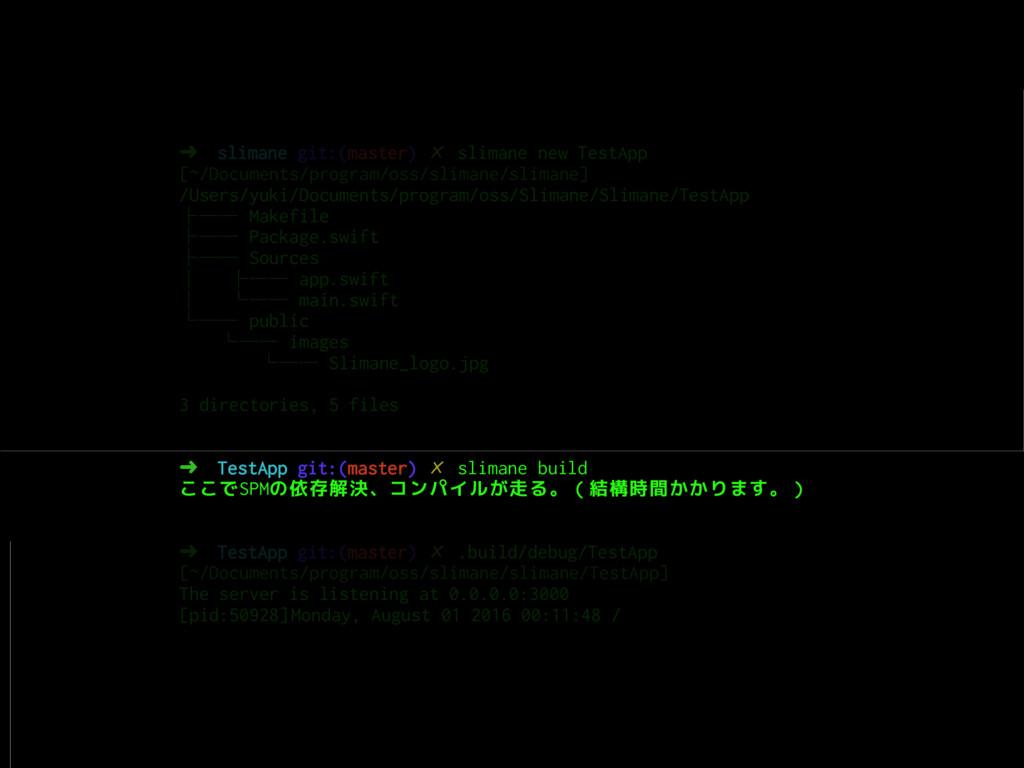 ➜ slimane git:(master) ✗ slimane new TestApp [~...