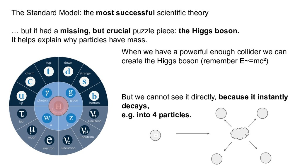 The Standard Model: the most successful scienti...