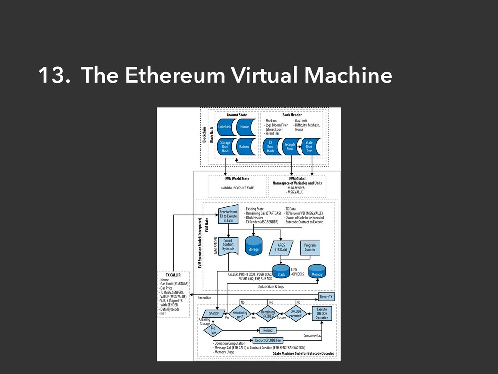 13. The Ethereum Virtual Machine