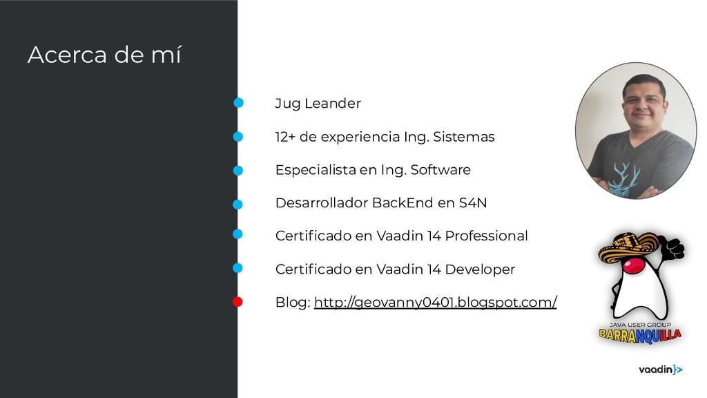Acerca de mí Jug Leander 12+ de experiencia Ing...