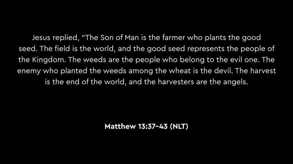 """Jesus replied, """"The Son of Man is the farmer wh..."""