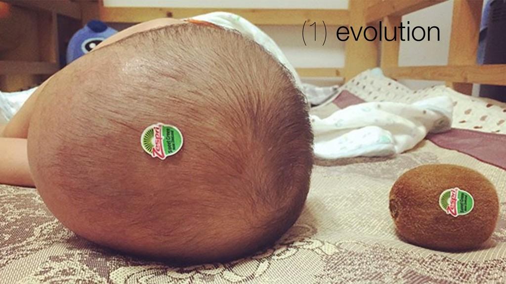 (1) evolution