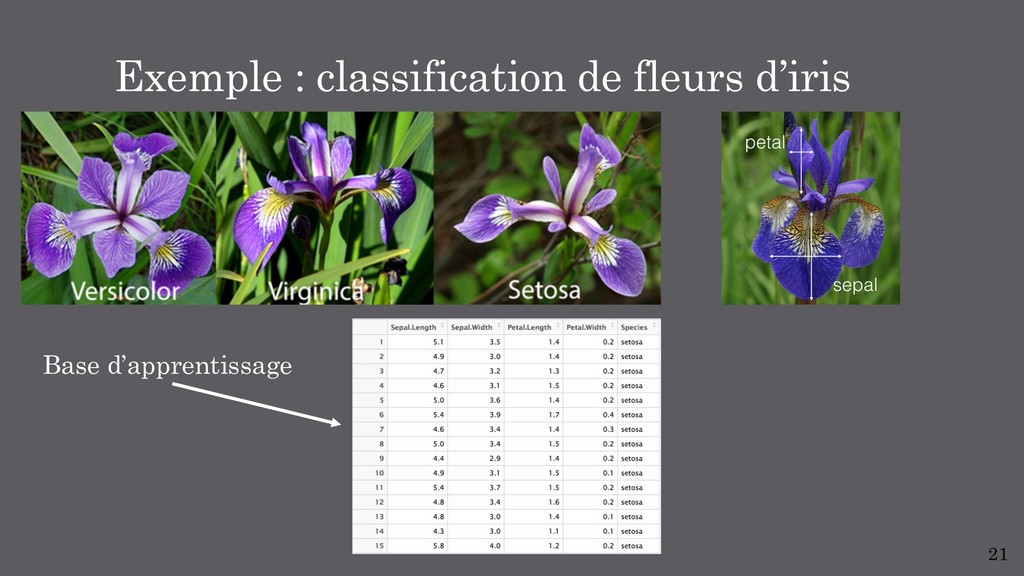 21 Exemple : classification de fleurs d'iris Ba...