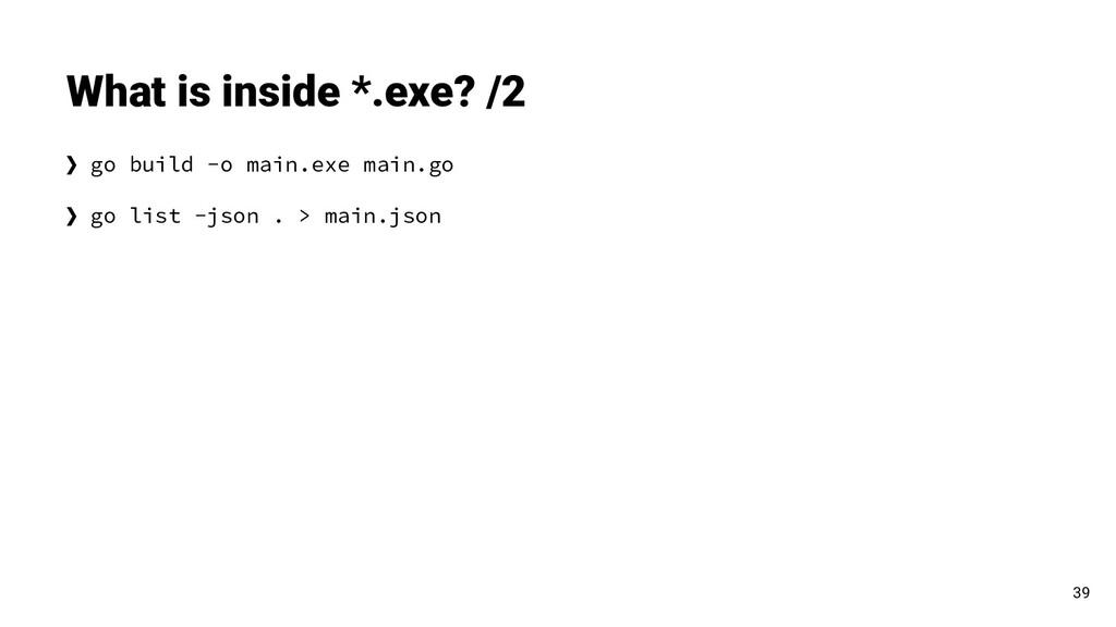 ❯ go build -o main.exe main.go ❯ go list -json ...