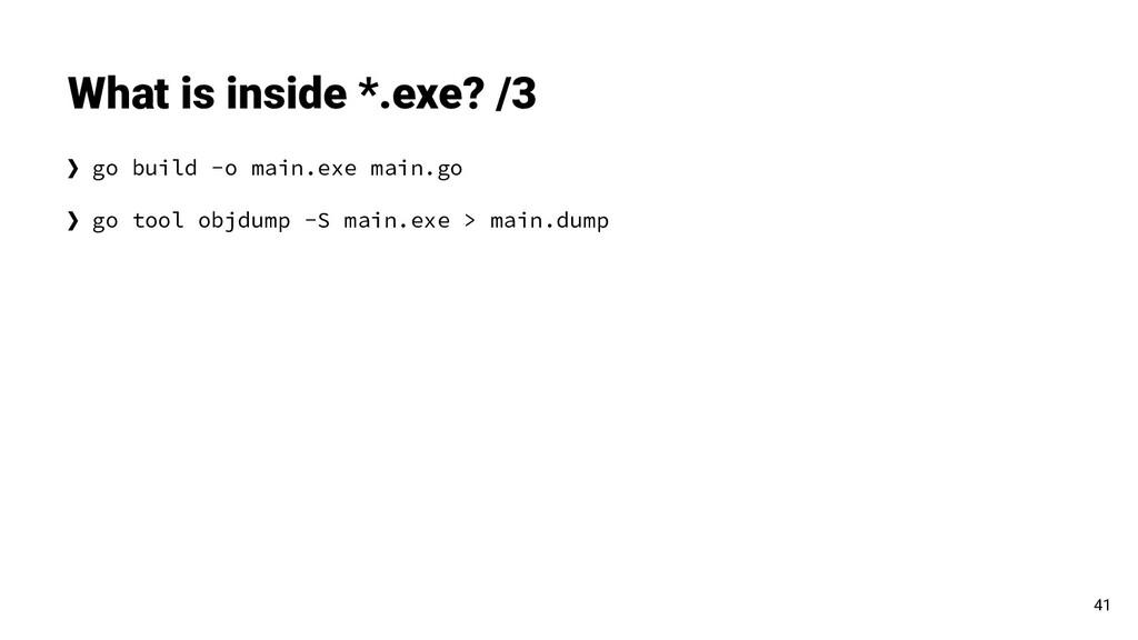 ❯ go build -o main.exe main.go ❯ go tool objdum...