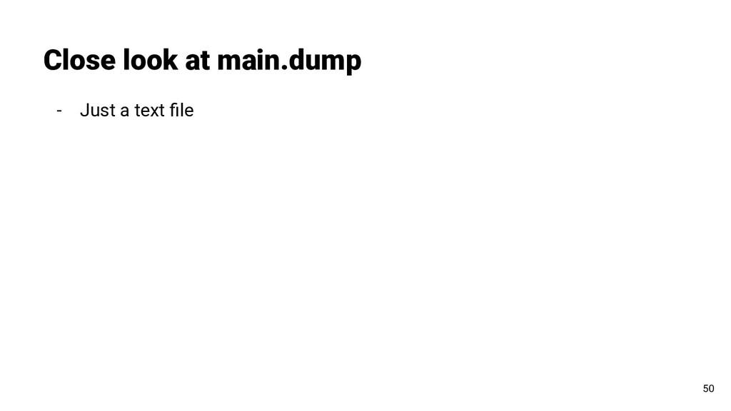 - Just a text file Close look at main.dump 50