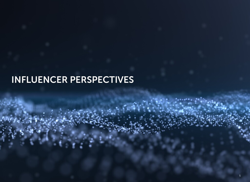 INFLUENCER PERSPECTIVES 5