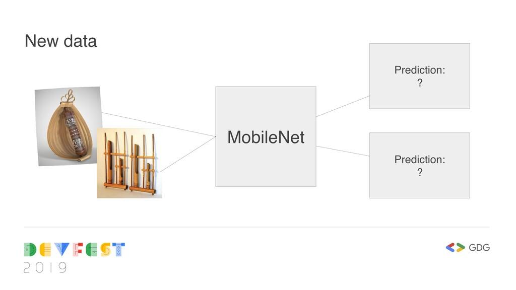 New data MobileNet Prediction: ? Prediction: ?