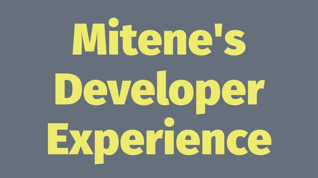 Mitene's Developer Experience