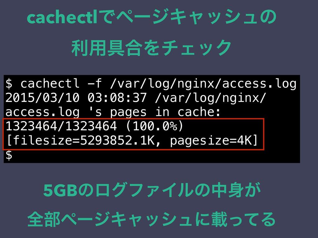 cachectlͰϖʔδΩϟογϡͷ ར༻۩߹ΛνΣοΫ $ cachectl -f /var...