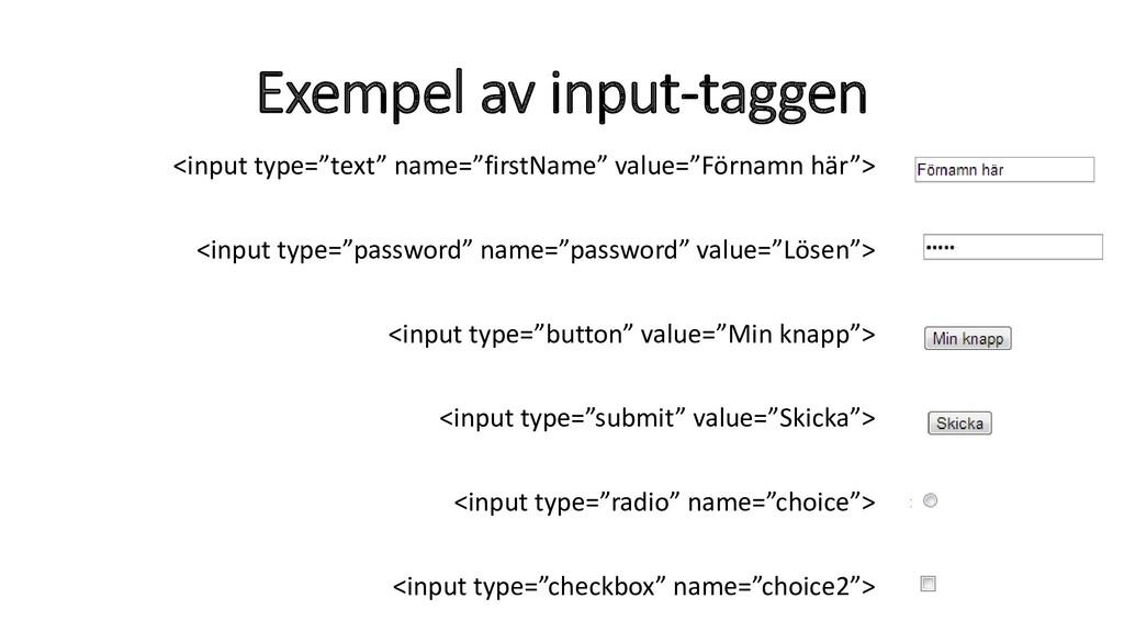 "Exempel av input-taggen <input type=""text"" name..."