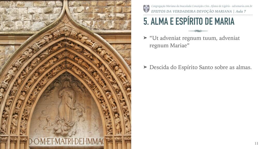 """5. ALMA E ESPÍRITO DE MARIA ➤ """"Ut adveniat regn..."""