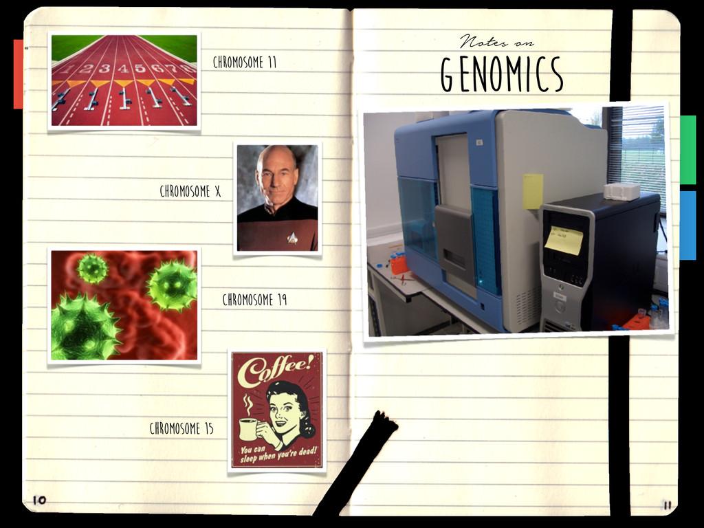Chromosome 11 Chromosome X Chromosome 15 GENOMI...