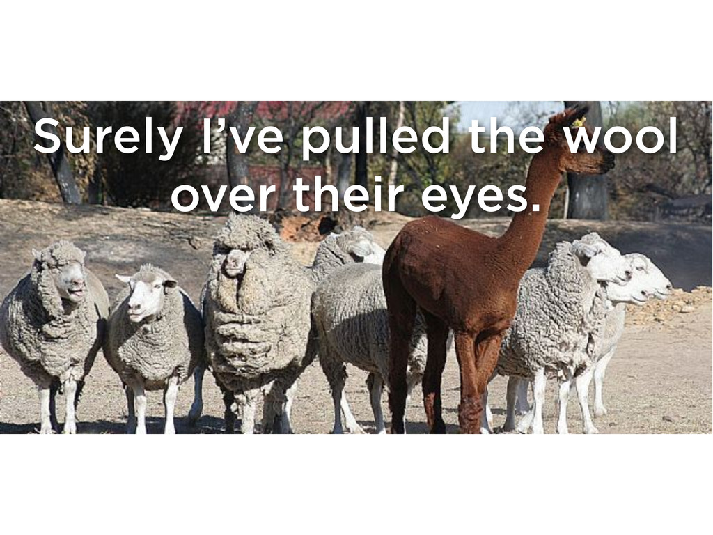 Surely I've pulled the wool over their eyes.