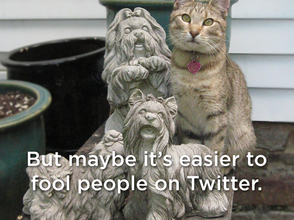 But maybe it's easier to fool people on Twitter.