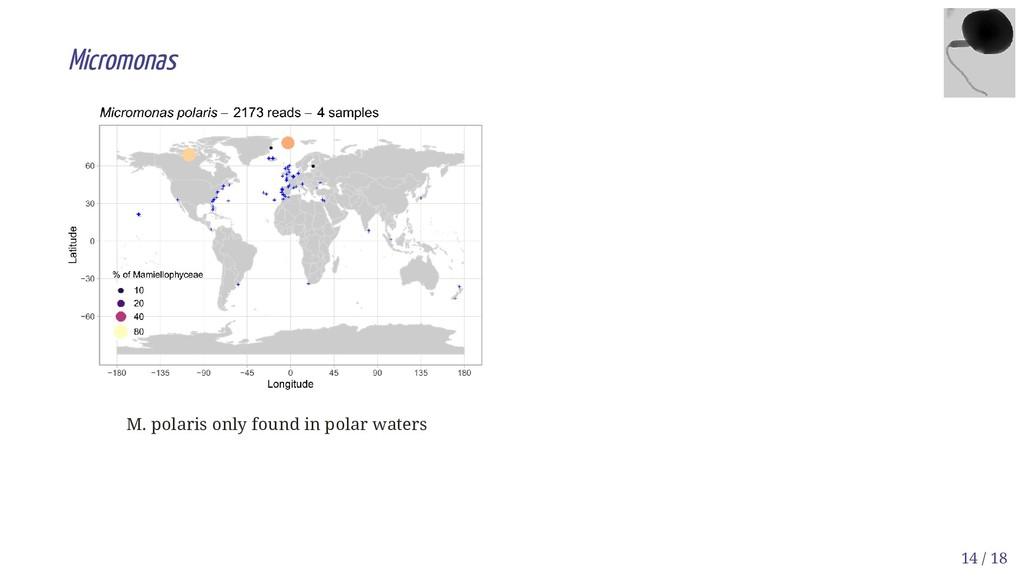M. polaris only found in polar waters Micromona...