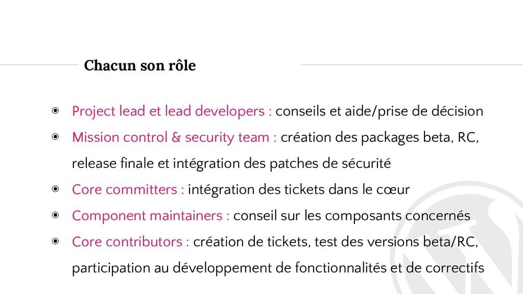 Chacun son rôle ◉ Project lead et lead develope...