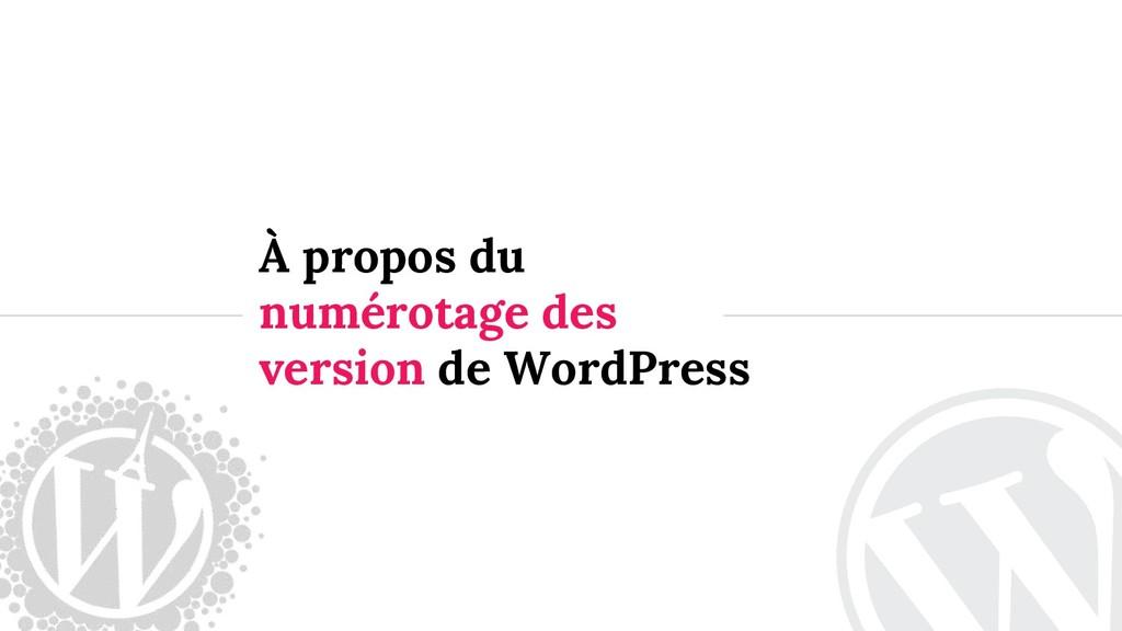 À propos du numérotage des version de WordPress