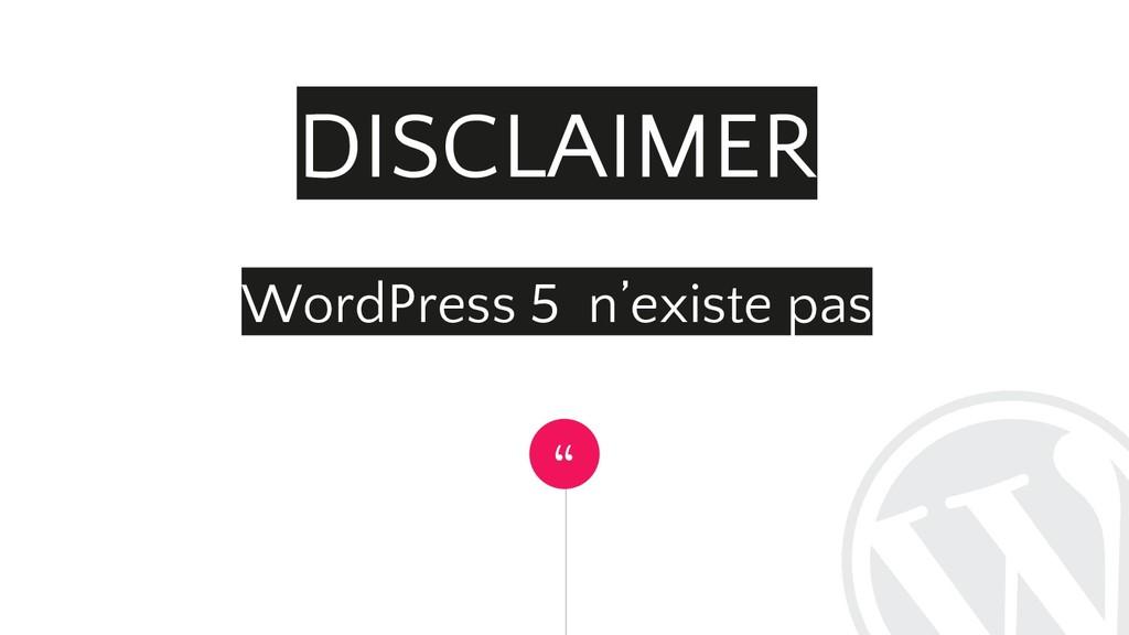 """"""" DISCLAIMER WordPress 5 n'existe pas"""