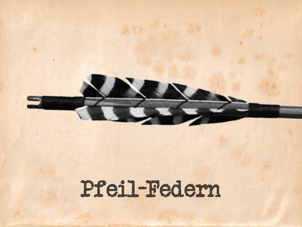 Pfeil-Federn