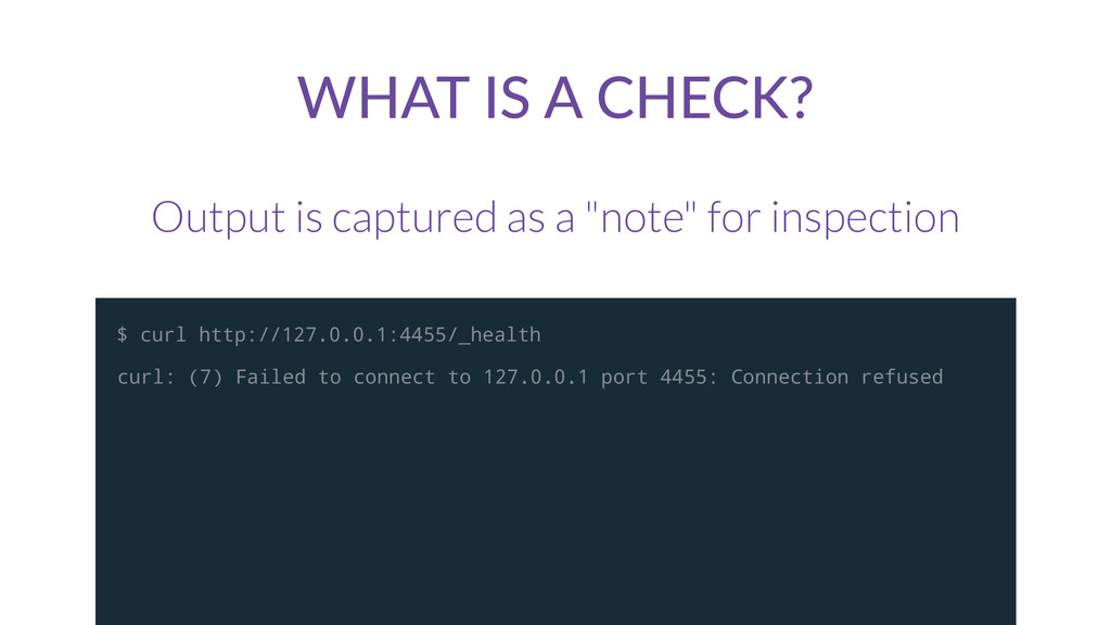 "WHAT  IS  A  CHECK? Output is captured as a ""no..."