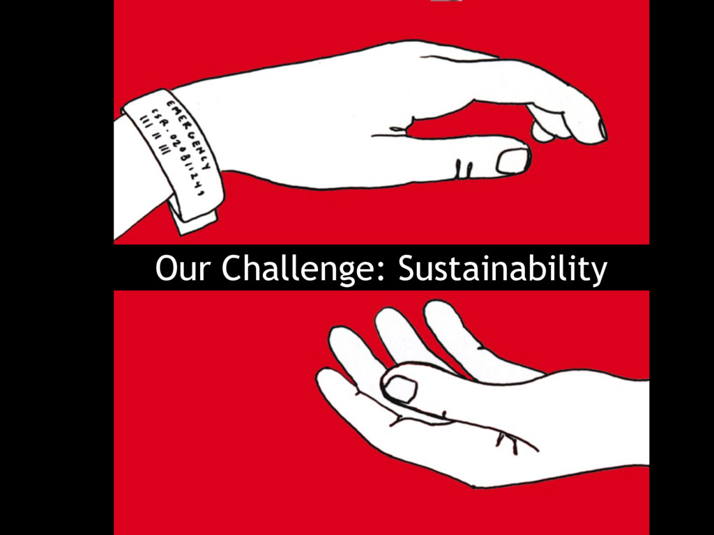 Our Challenge: Sustainability