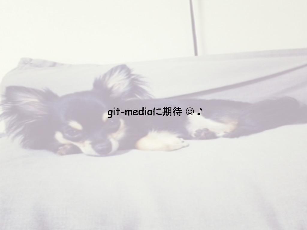 git-mediaに期待 J ♪