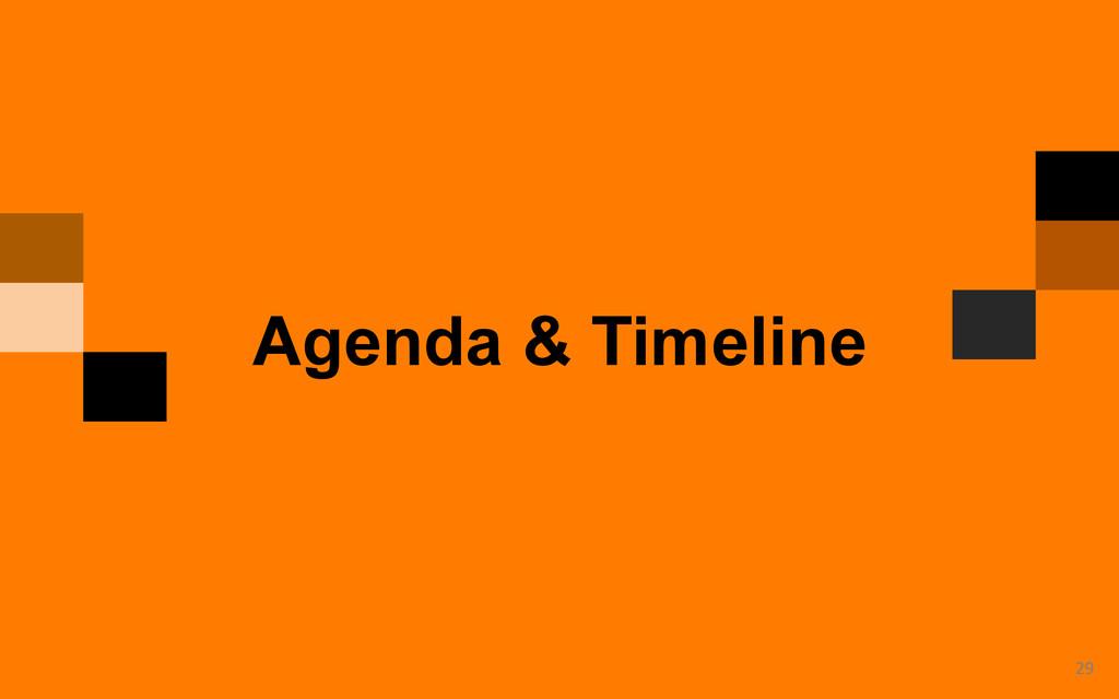 29  Agenda & Timeline
