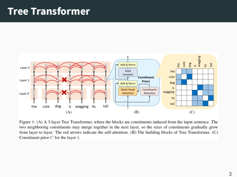 Tree Transformer 3