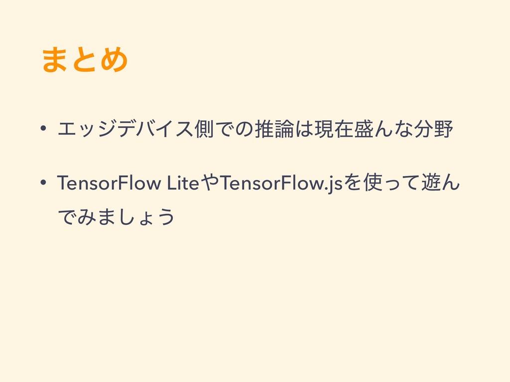·ͱΊ • ΤοδσόΠεଆͰͷਪݱࡏΜͳ • TensorFlow LiteTe...