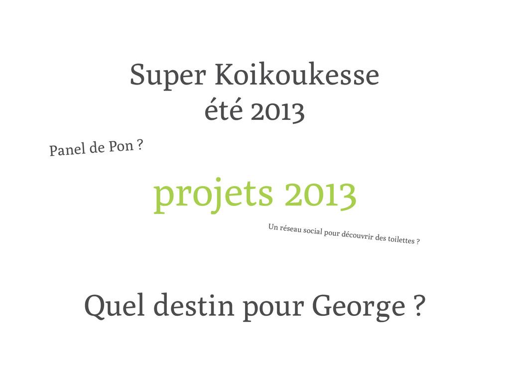 projets 2013 Super Koikoukesse été 2013 Quel de...