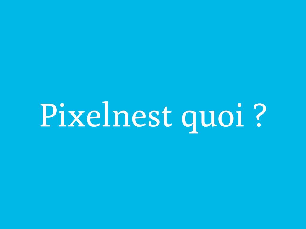 Pixelnest quoi ?