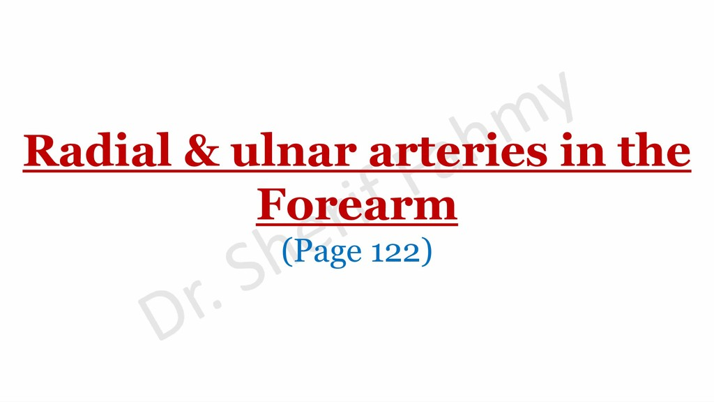 Radial & ulnar arteries in the Forearm (Page 12...