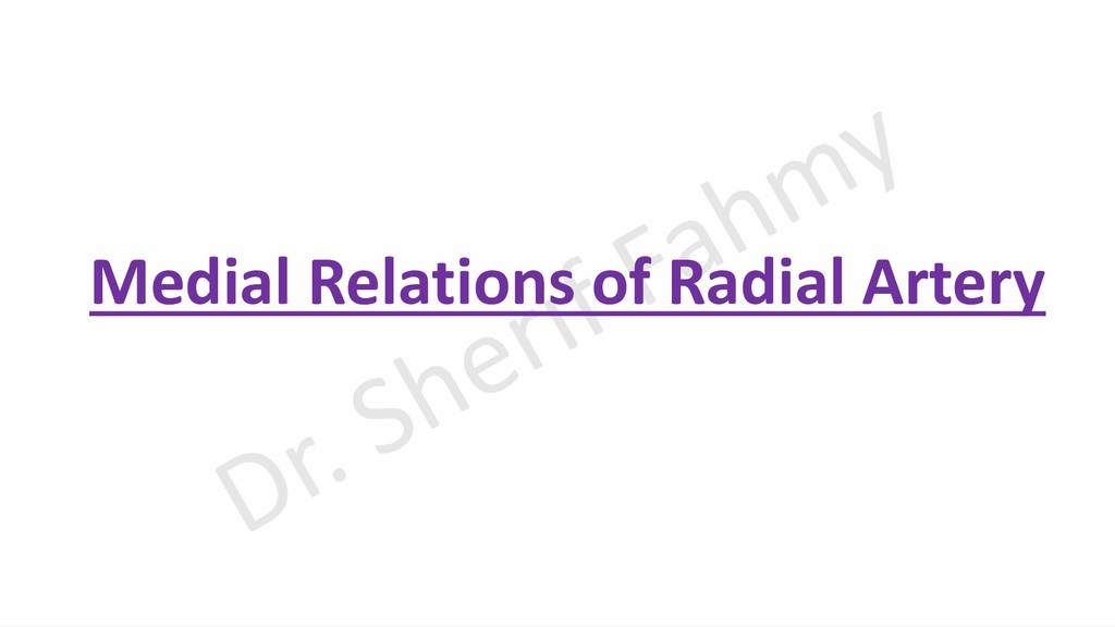 Medial Relations of Radial Artery