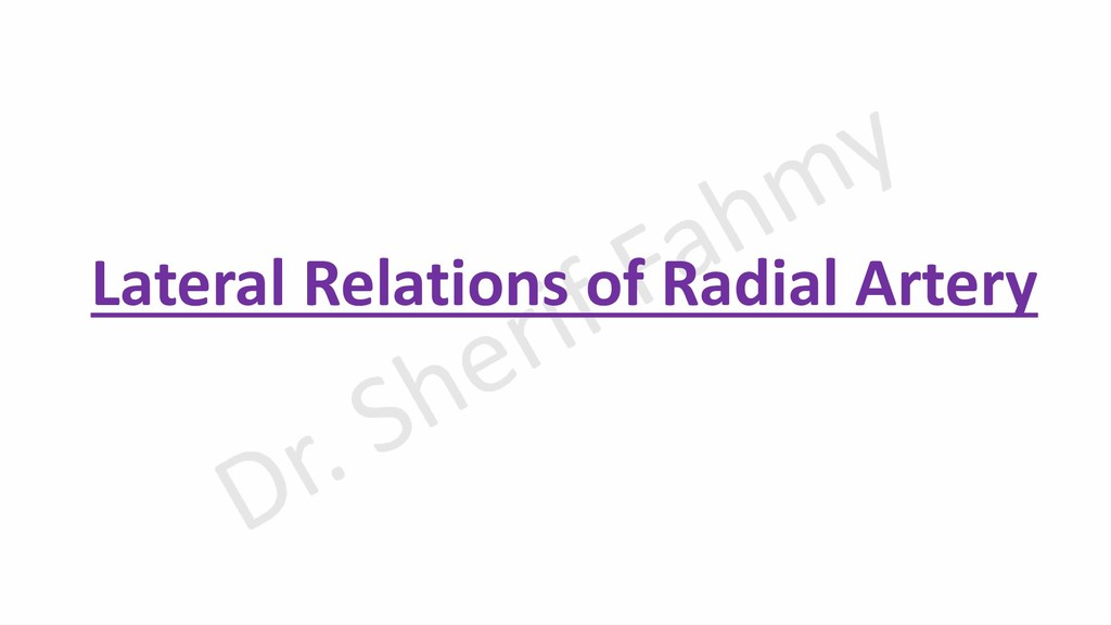 Lateral Relations of Radial Artery