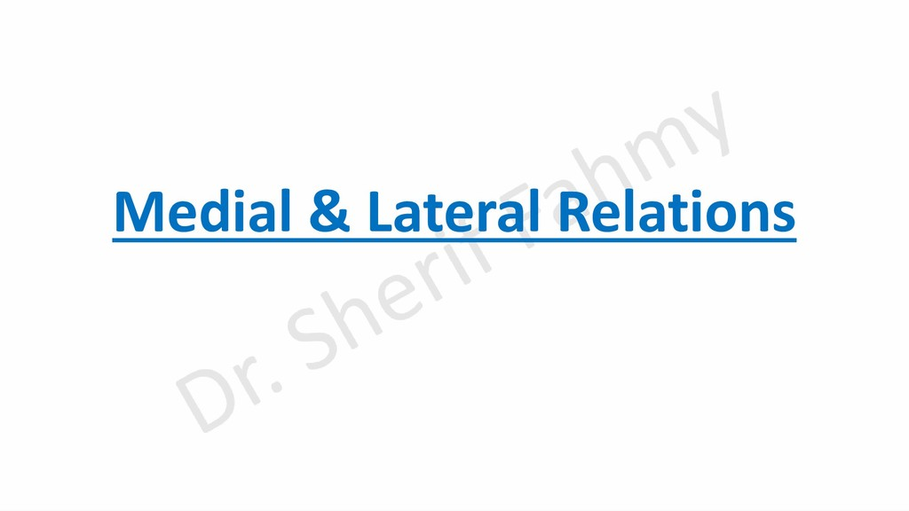 Medial & Lateral Relations