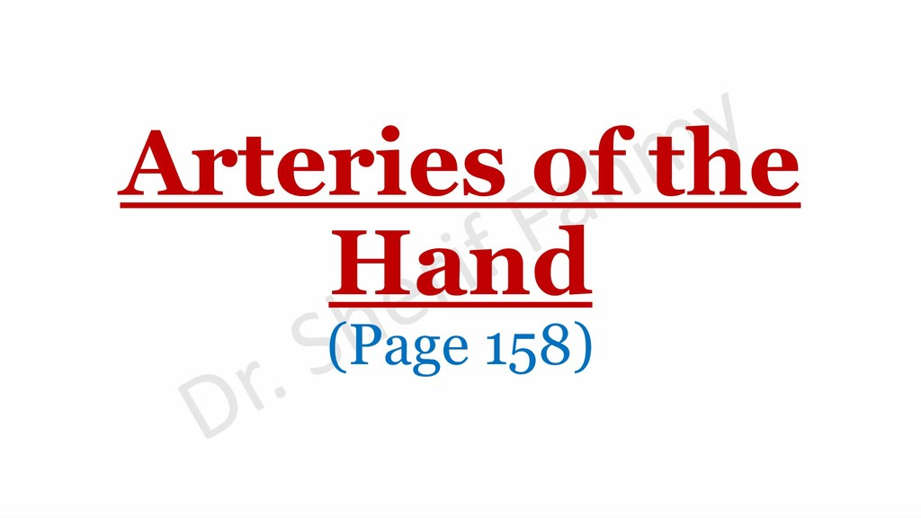 Arteries of the Hand (Page 158)