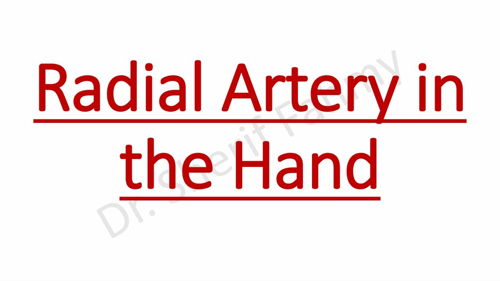 Radial Artery in the Hand