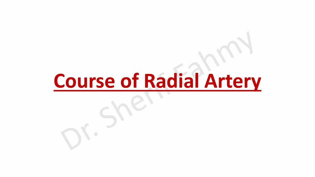 Course of Radial Artery